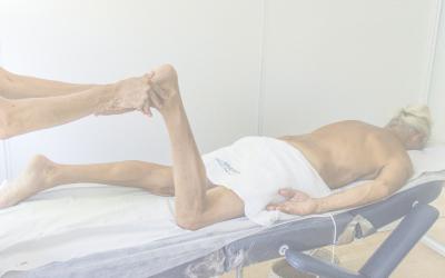 Fisioterapia Estructural y movimiento